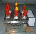 ZW8-12G/630-20户外高压真空断路器
